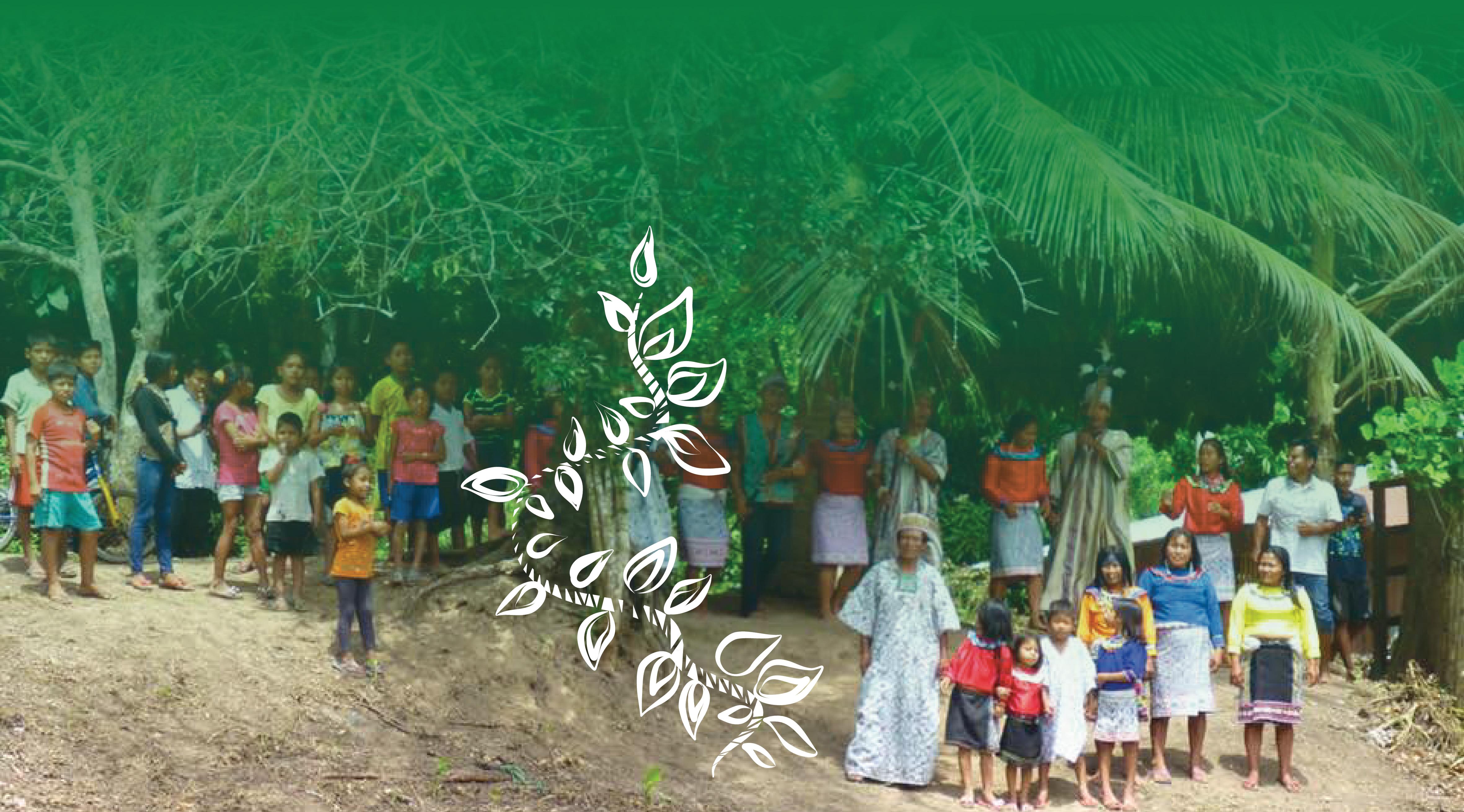 The Santuario de la dieta Shipibo is a family-run operation by Maestro Diogenes & Maestra Anita